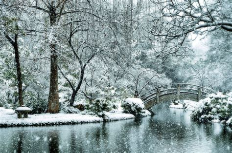 japanese garden in winter snow japanese garden fort worth snowfall winter stor