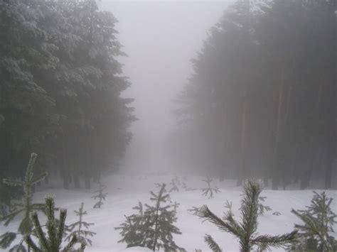la niebla y la niebla o neblina 191 qu 233 diferencia hay entre ellas