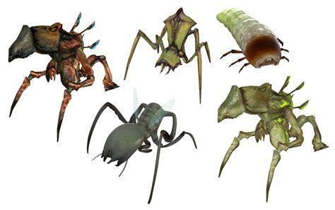doodlebug insect wiki antlion half wiki fandom powered by wikia