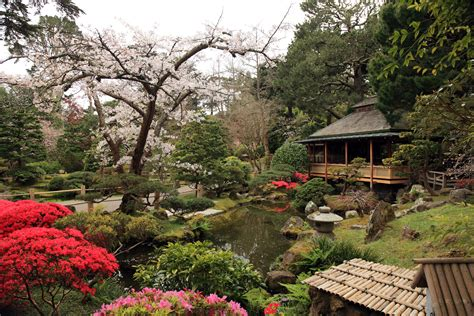 San Francisco Garden by Japanese Tea Garden Co Curricular Tickets Sat Sep 24