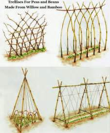 trellis plan permaculture ideas trellis ideas