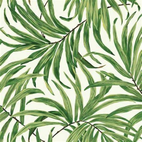 palm leaf wallpapers wallpaper zone bathroom