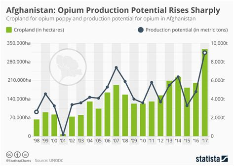 chart steep rise  poppy cultivation  production  opium statista