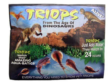 how to grow a dinosaur books grow your own triops a living dinosaur children