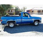 Buy Used 1982 CHEVY C 10 TRUCK CLEAN NEW PAINT AND