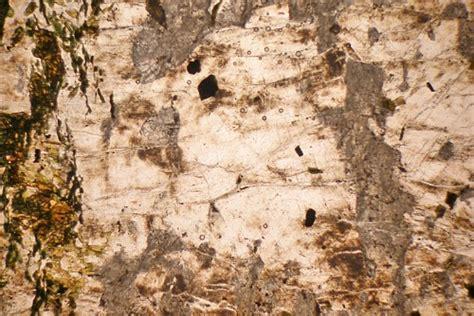 nepheline syenite thin section nepheline syenite ledmore assynt scotland thin section
