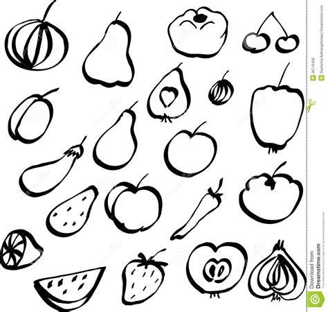vegetable doodle vector free set of doodle fruits and vegetables royalty free stock