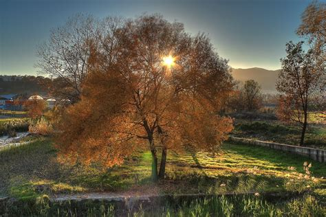 Landscape Definition Tagalog Wallpaper Autumn Trees Landscape Hd Widescreen High