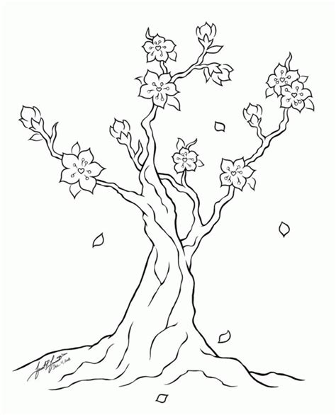 wow  gambar bunga sakura hitam putih gambar bunga hd