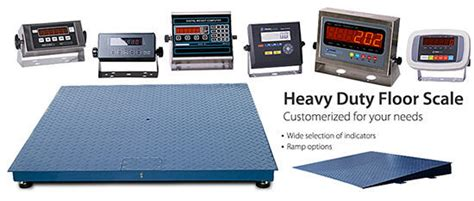 cnp floor scales scaletec south africa scale suppliers precision balances weighing scales south africabaseline scales