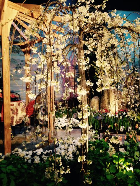 Seattle Flower And Garden Show Seattle Flower Garden Show 2017 Northwest Flower And Garden Show Garden Design Northwest