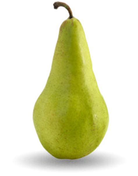 Color Names by List Of Ten Pear Varieties Usa Pears