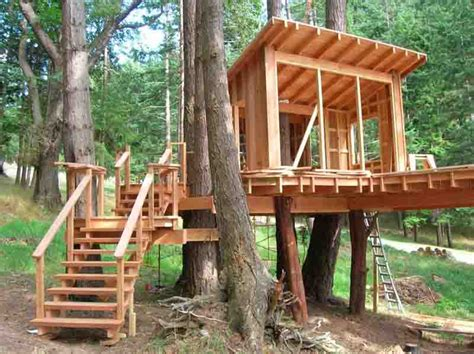 backyard tree house kits how to build a treehouse in the backyard