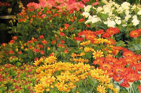 Bukett kunstige blomster trysil blomsterforretning