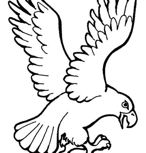 imagenes de animales aereos para colorear animales aereos en ingles y espa 241 ol imagenes para