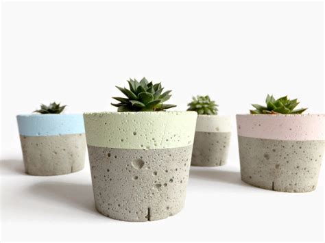 pastel concrete mini planter for succulent home decor modern