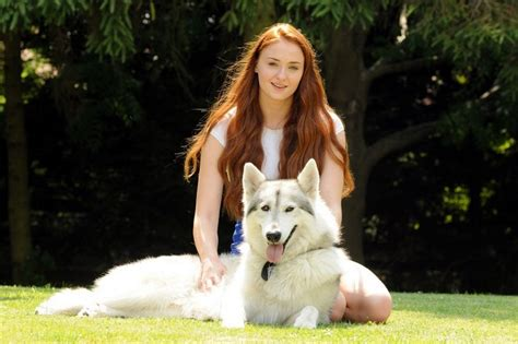 of thrones breed of thrones adopts quot direwolf quot as real pet