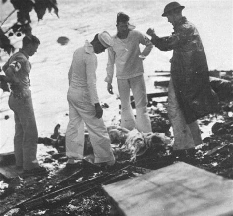pearl harbor bodies pearl harbor attack quot the body of a japanese aviator