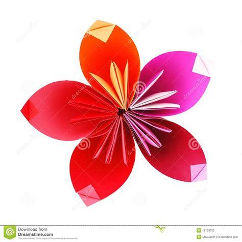 Flor De Origami - flor de papel de origami foto de stock imagem 19139020