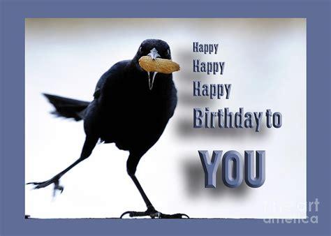 happy birthday bird images happy birthday bird card photograph by nancy greenland