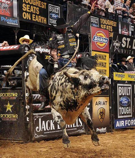 bull riding wallpapers wallpapersafari