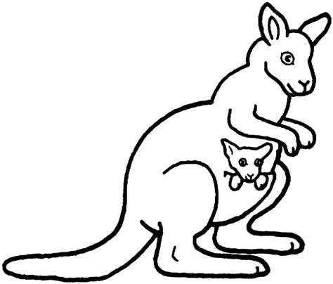 Kangaroo Colouring Page 2 » Ideas Home Design