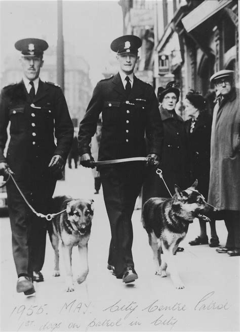 history of dogs uk history nottingham city dogs and handlers