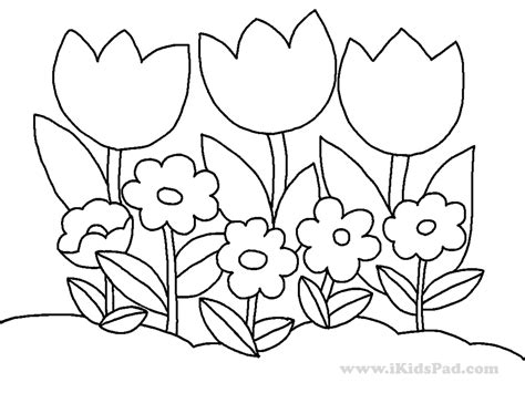Imagenes Para Dibujar Naturaleza | tulip 225 n 126 naturaleza p 225 ginas para colorear