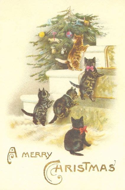 christmas cats kittens   stairs christmas cats christmas christmas cats vintage