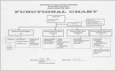 functional organizational chart template functional organization chart car interior design