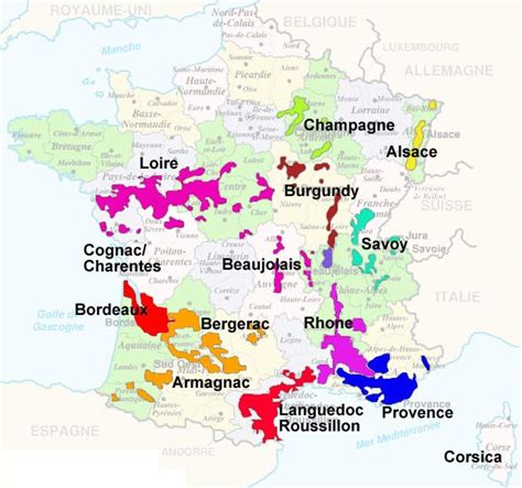 best wine regions climbing the wine trellis chagne sparkling wine