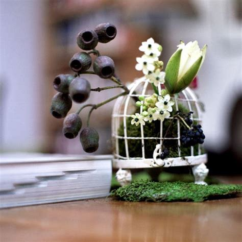 cheap bird cages for centerpieces shellita s myrka jaki iffat homepage butterfly