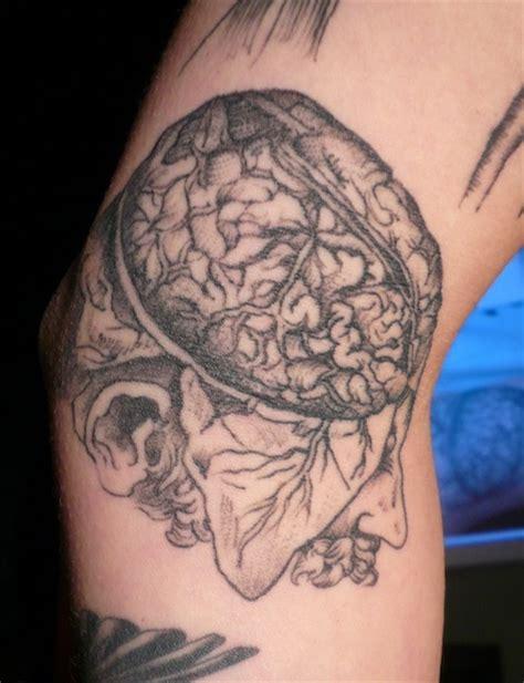 tattoo prices darwin tattoo y ciencia taringa