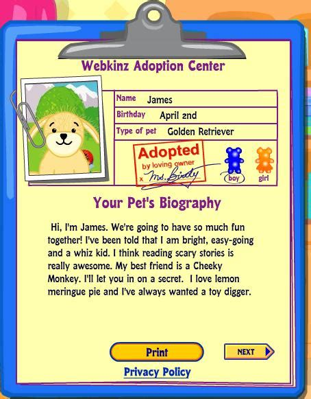 webkinz golden retriever names golden retriever webkinz names merry photo