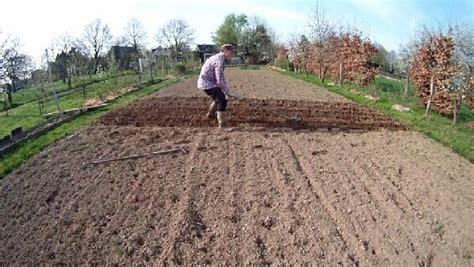 kartoffeln im garten kartoffeln pflanzen oder einem gartengeraet mit dem