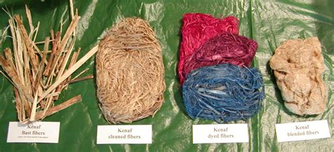 How To Make Paper From Plant Fibers - step lesson 10 procedures