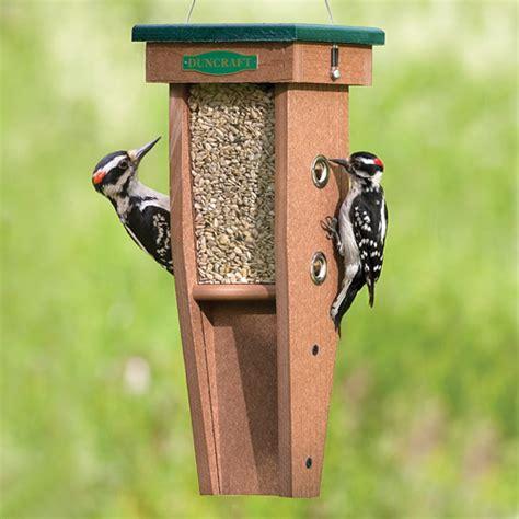 duncraft com duncraft woodpecker feeder