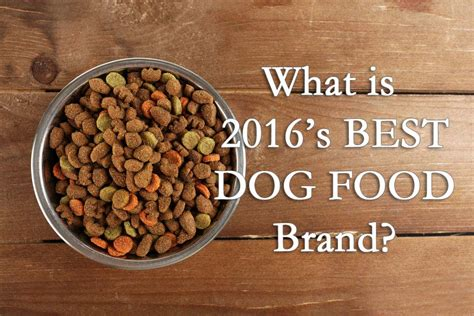 what is the best puppy food for golden retrievers what is the best food for a golden retriever top 10 best food brands reviews