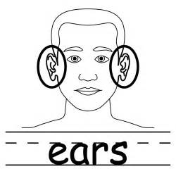 ears free coloring pages art coloring pages