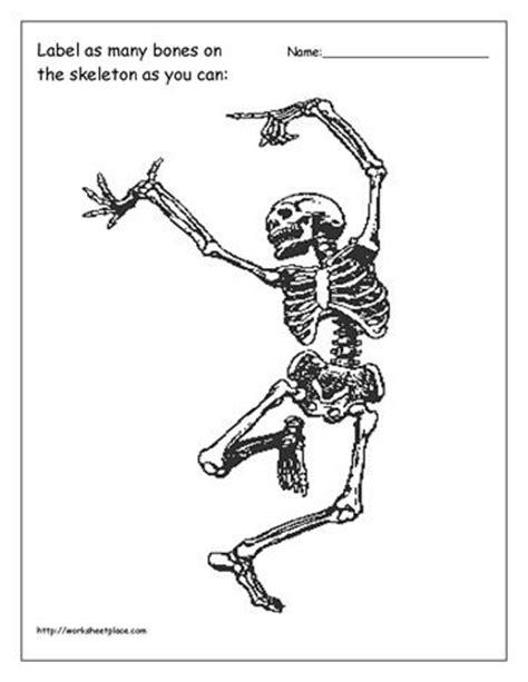 label pattern worksheet label the bones worksheet school ideas pinterest