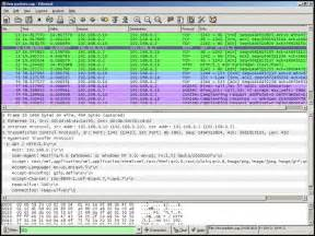 wireshark download