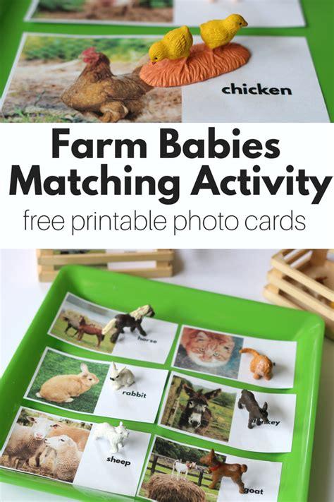 Free Printable Photo Cards