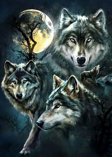 best 25 wolf range ideas on pinterest wolf oven wolf best 25 wolf painting ideas on pinterest awesome