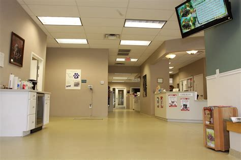 animal house veterinary clinic germantown veterinary clinic pet resort pet boarding animal hospital