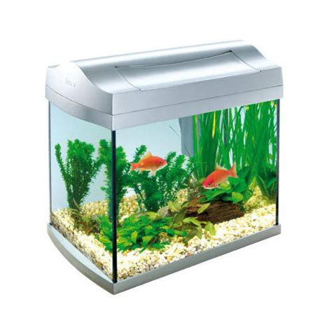 Aquarium L With Fish by Tropical Fish Tank Maintenance 20l Furniture Nano