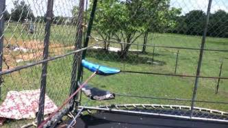 Kids Backyard Wrestling How To Make A Trampoline Wrestling Ring And Steel Cage