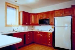 How To Remodel Kitchen Cabinets Yourself by Kitchen Doors Designkitchen Remodel Kitchen Cabinet Styles