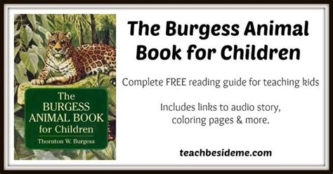 the burgess animal book for children books best 25 animal books ideas on kid books