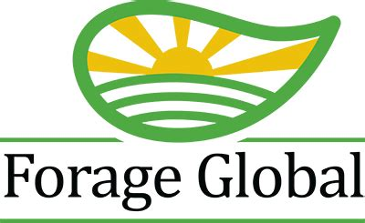 eventure global all rights reserved forage global