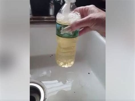shows yellow tap water in new brunswick new